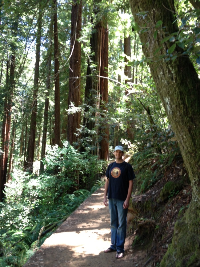Draped in happiness only derived from being in the Redwoods