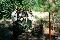 California Conservation Corps members, proud of their hard work