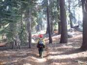 Sequoia Kings Canyon NP 066