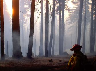 Yosemite Fires 069