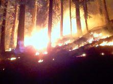Yosemite Fires 073